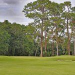 Brunswick Country Club_The Golfin Guy_5