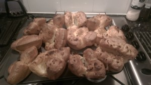 1st-attempt-yorkshires