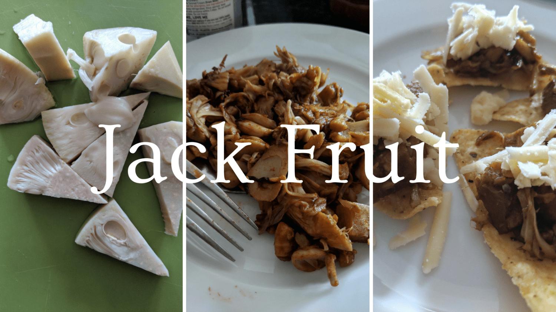 Featured Image - Jack Fruit Pulled Pork