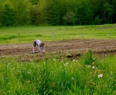 Journey of an Organic Farmer