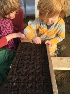 kids planting organic seeds