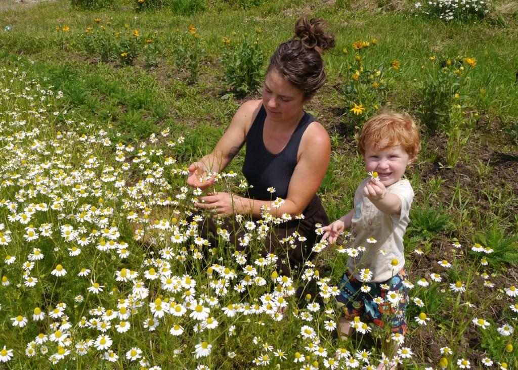 organic gardening with kids