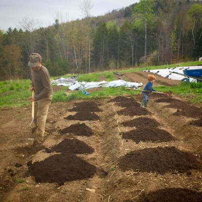 weeding and composting garden beds in spring