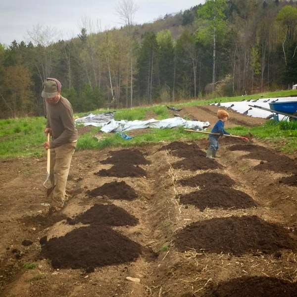 Spring Garden Prep: when and how to work the soil