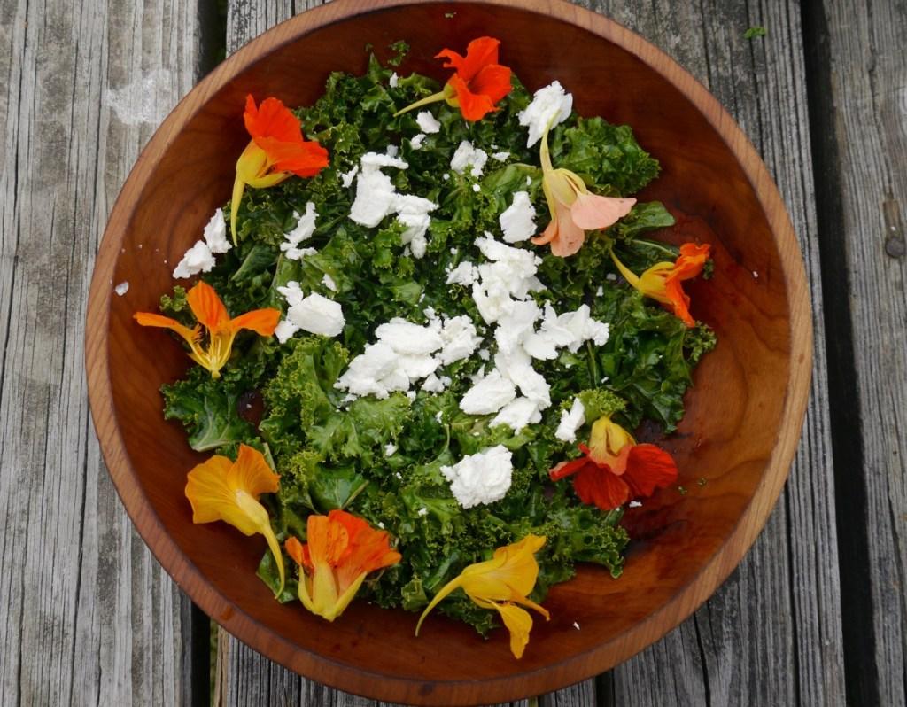 nasturtium flower kale salad