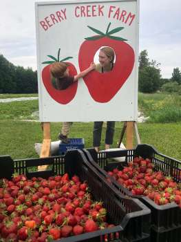 Visiting a pick-your-own strawberry farm, connecting with the land and our food