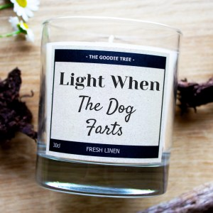 Light when the dog farts glass jar