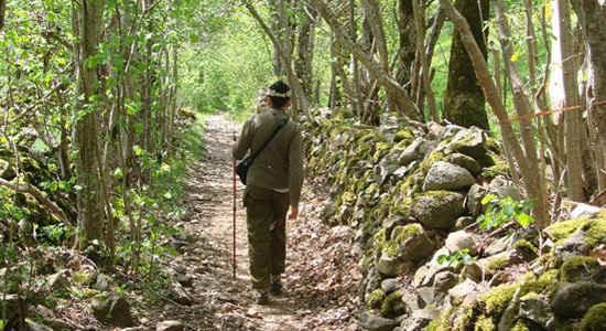 chartres pilgrimage
