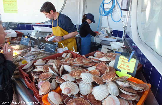 selling fresh fish from the bay of the somme, le crotoy, Picardy