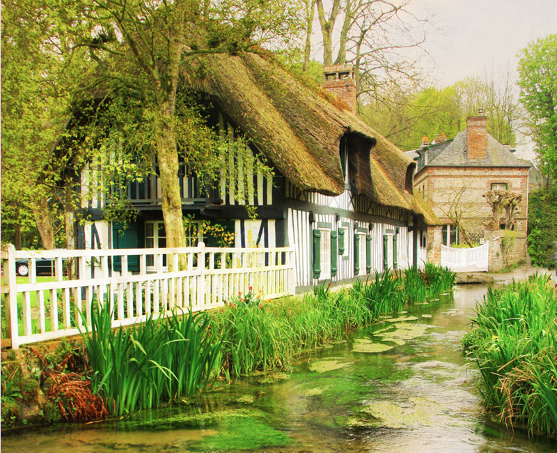 Very pretty half-timbered house with a river running alongside filled with reeds and water plants, Veules
