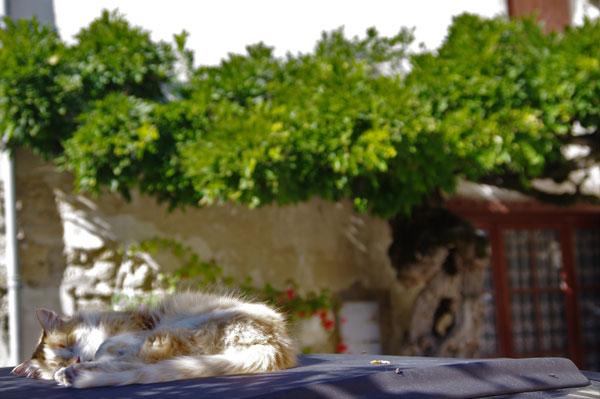 castelmoron-tranquil-town-burgundy