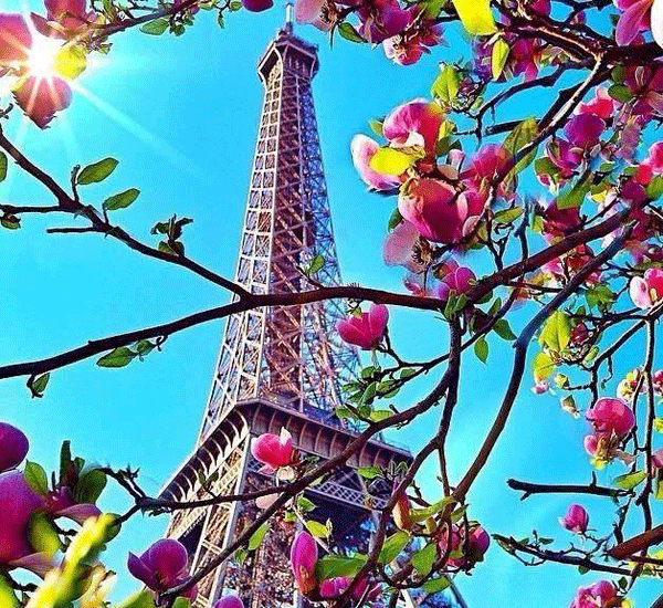 eiffel-tower-paris