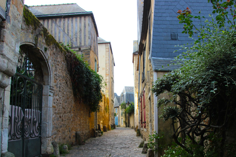 Cobbled street with roses and flowers growing over ancient walls in Le Mans, France