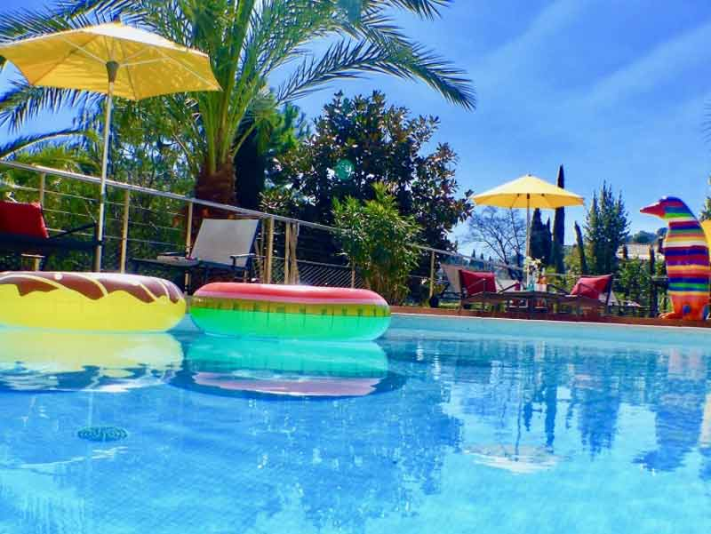 Swimming pool with rubber rings floating, palm trees line the edge