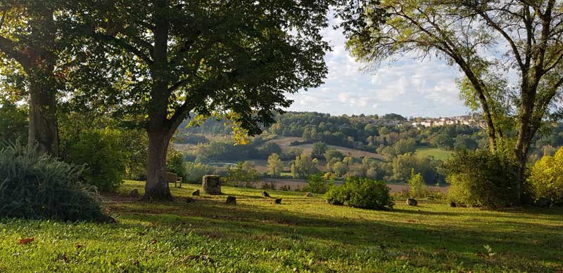 View of countryside, trees on hillls, grassy valley, green and fertile