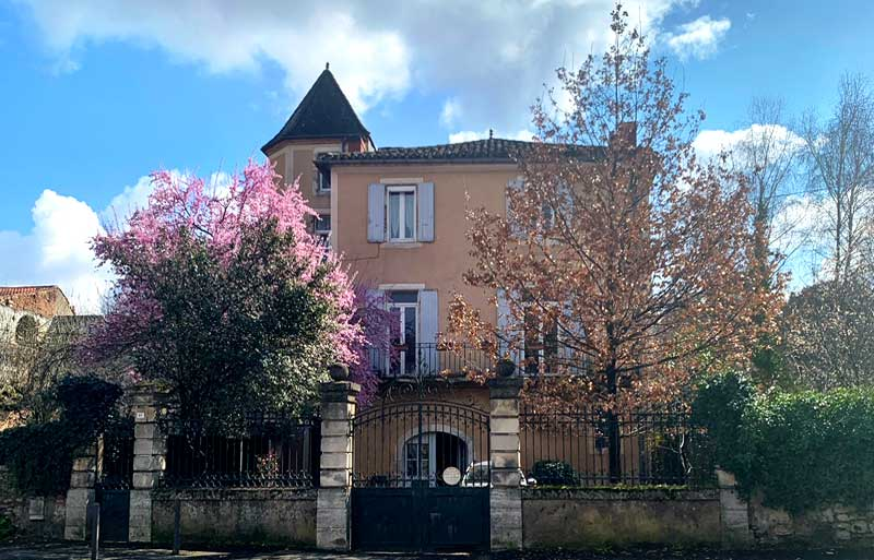 Pretty stone house with blossom trees in the garden