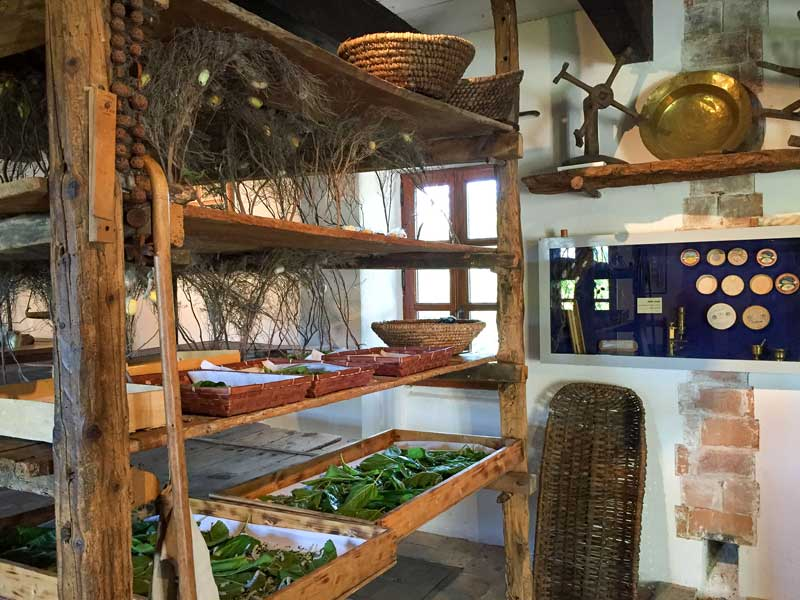 Wooden shelves with silk worms feasting on leaves to create silk