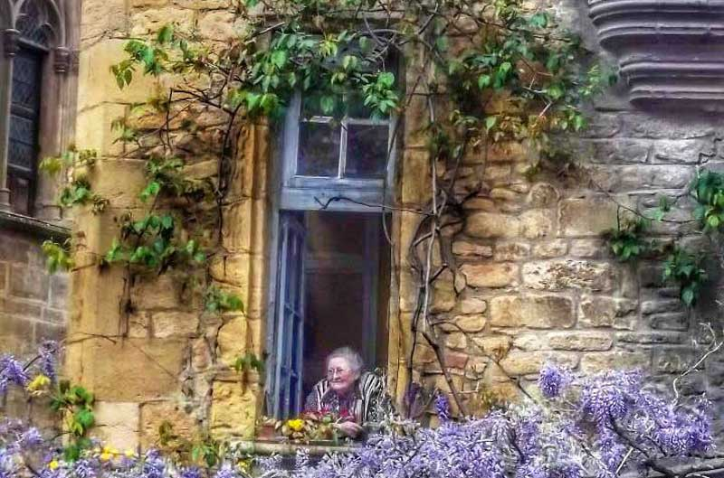 Old lady looks out of the window of an ancient stone house with windows framed by wisteria