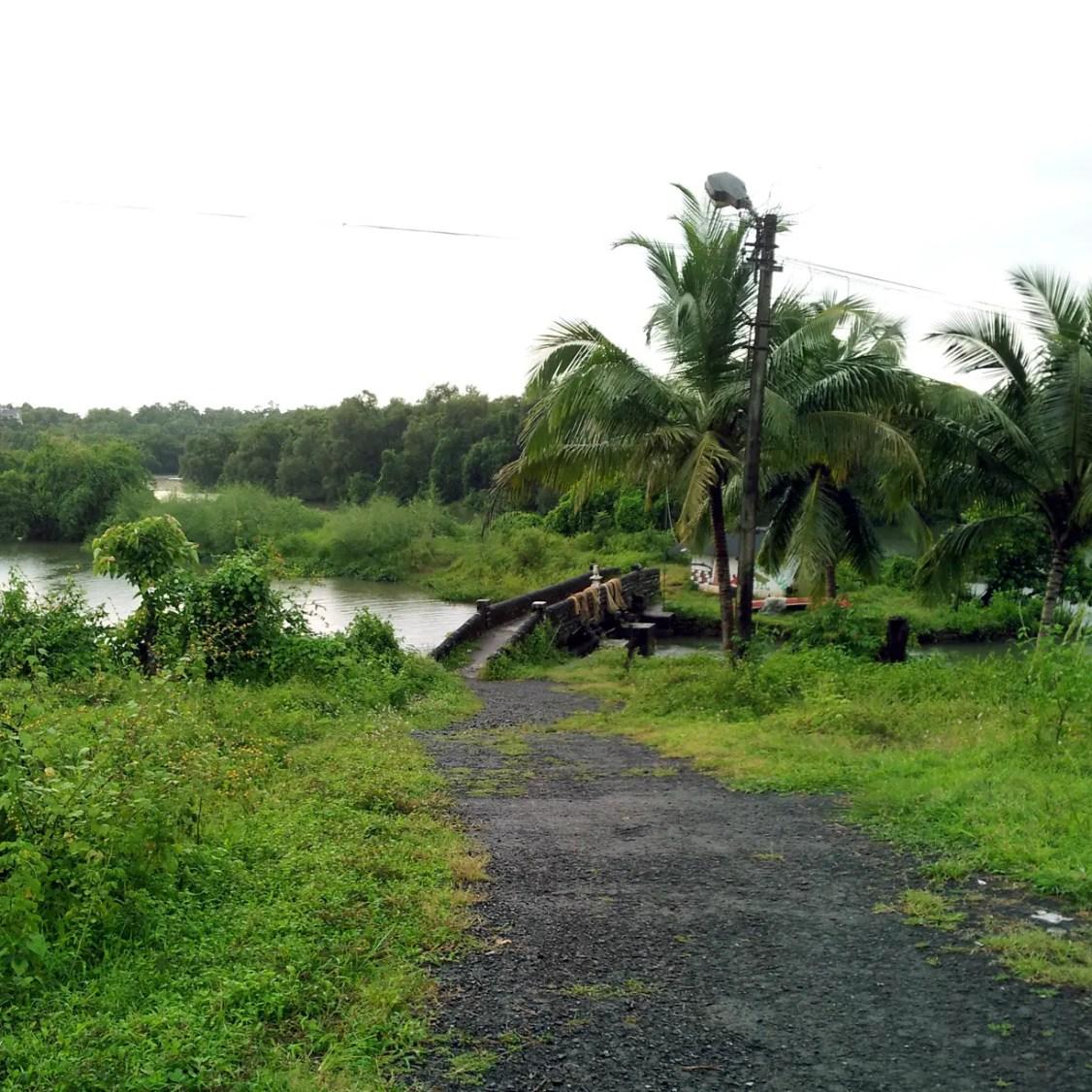Ancient fishpond dam - An off-the-beaten-path Goan holiday