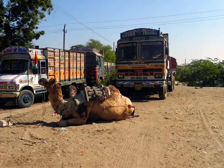 Gujarat_Mandvi_Transport - The colours of Kutch