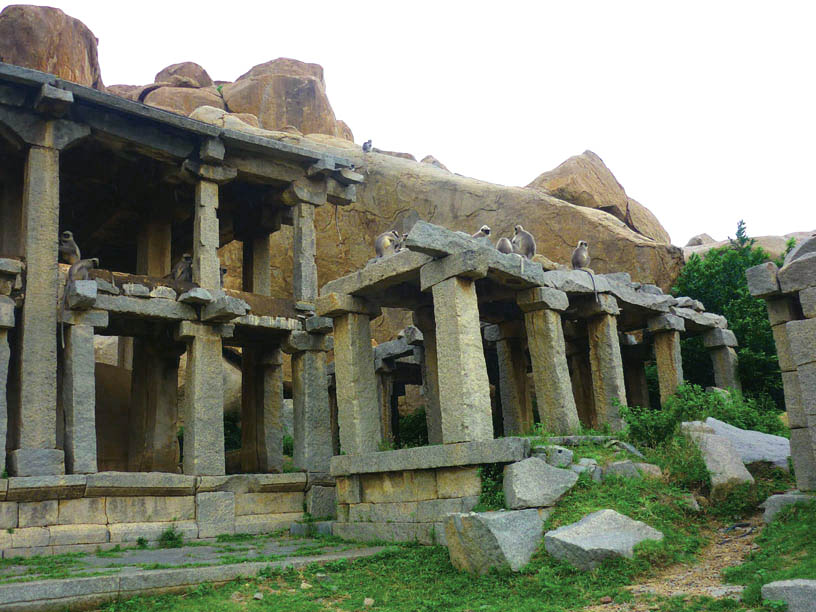 Hampi_OldBazaar_Langurs - Magical sights of Hampi