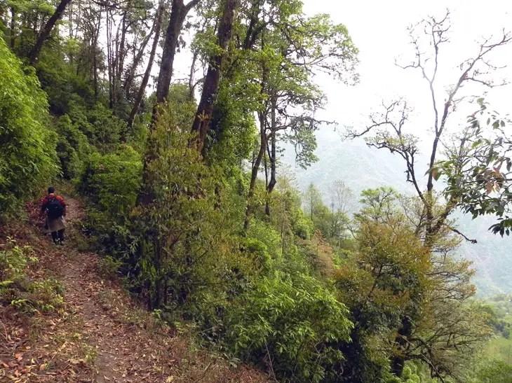 Kalimpong_TrailAtSillery4