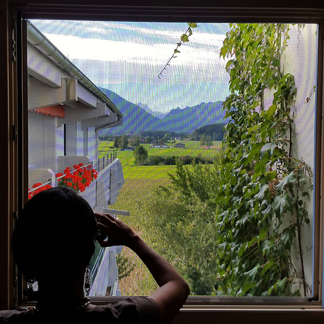 Fly mesh - Ainring, Salzburg and the Jenner: A road trip through Germany, and other ways to pass the time (Part 5)