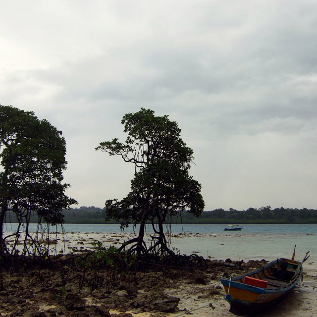 Andamans-Havelock-Beached boat