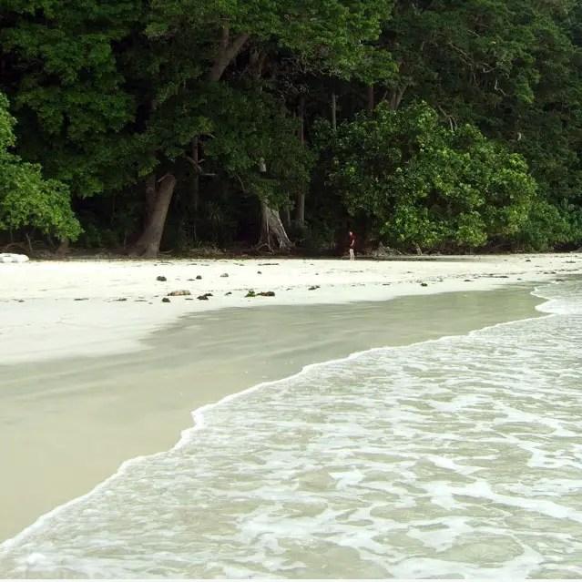 Andamans-Havelock-Radhanagar beach 2