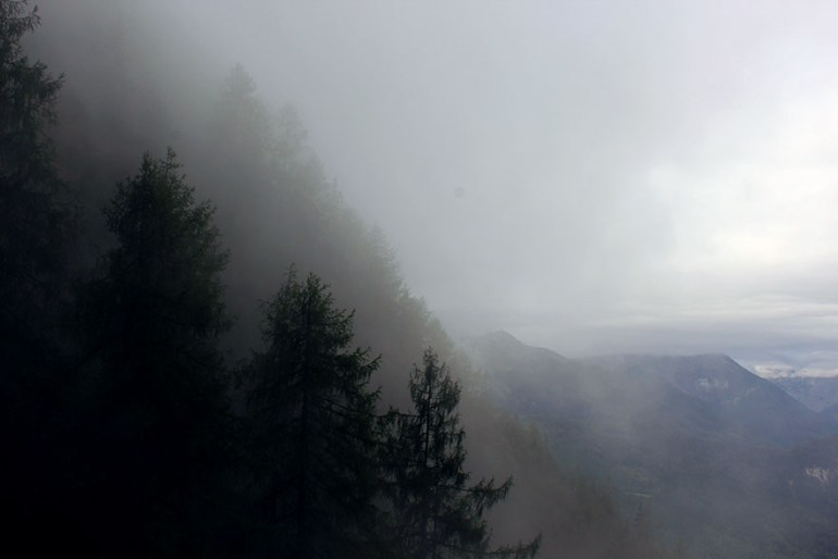 Misty trees - Ainring, Salzburg and the Jenner: A road trip through Germany, and other ways to pass the time (Part 5)