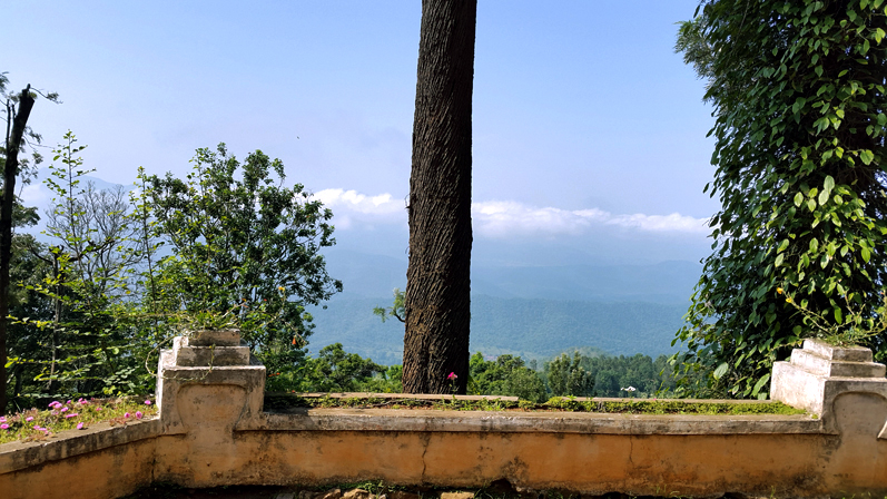 View from OLand estatate house, Nilgiris, India - travel photos