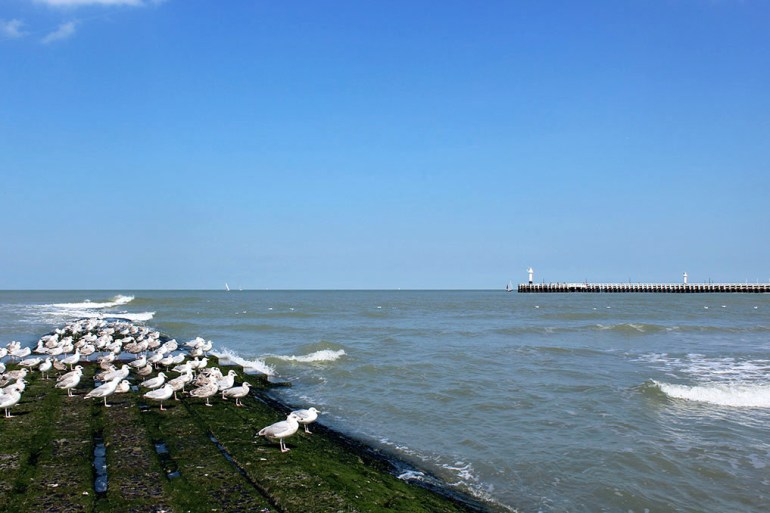 Breakwater at Nieuwpoort, Belgium - travel photos