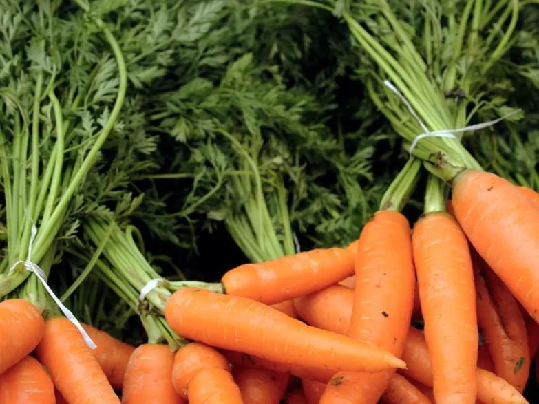 Carrots on sale at Doddabetta Peak, Ooty, Coonoor, India