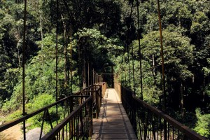 The viewing bridge on the river at Abbey Falls, Coorg, India