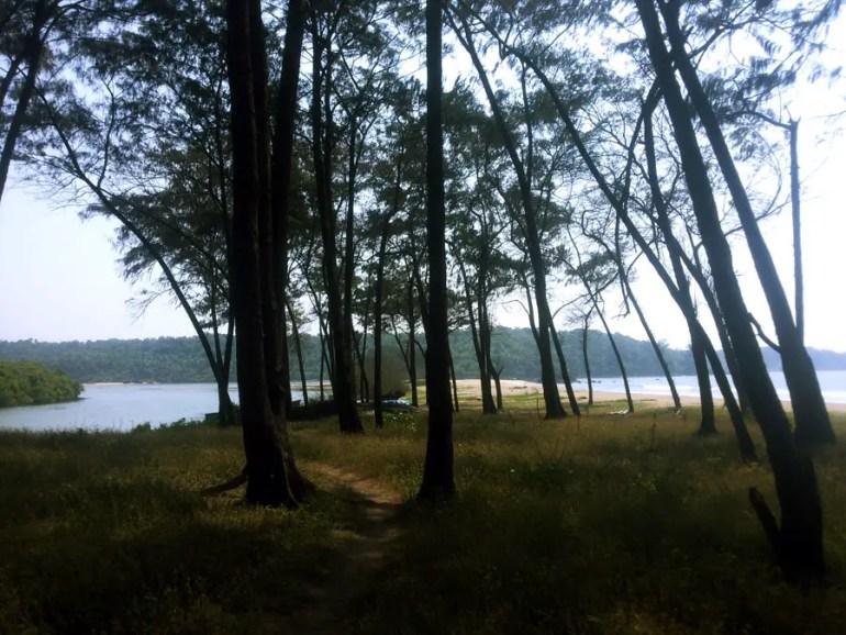 Agonda - nearby beaches -Galgibaga trees - perfect base for a Goa trip