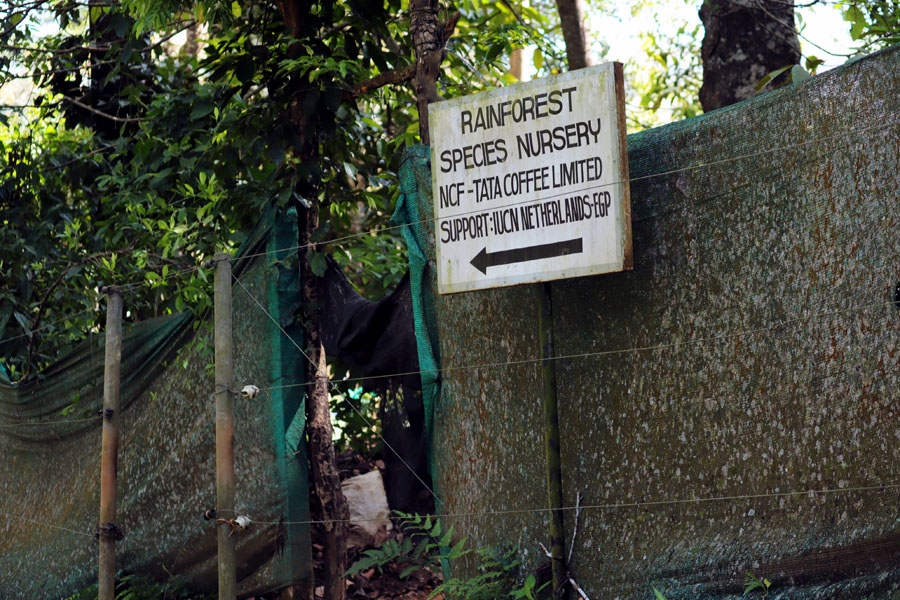 Valparai - Nursery signboard - In the shadow of elephants in Valparai