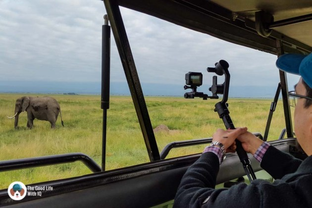 Stabilizer while shooting elephants - Review: Moza AirCross 3-axis gimbal camera stabilizer
