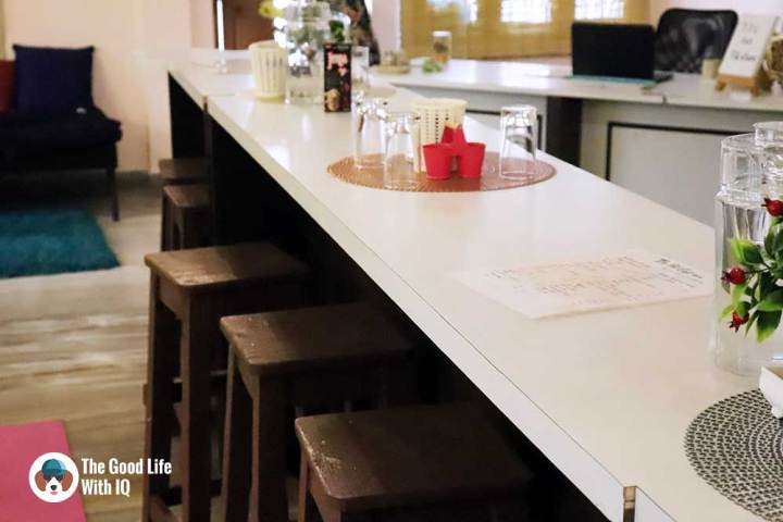 Community table - The Pet Café: Hyderabad's new pawty hotspot