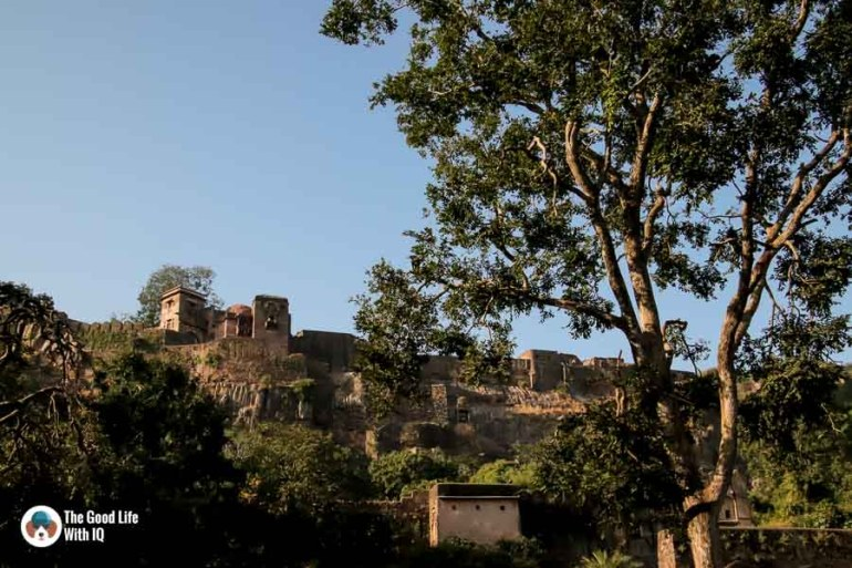 ranthambhore fort - Ranthambhore safari