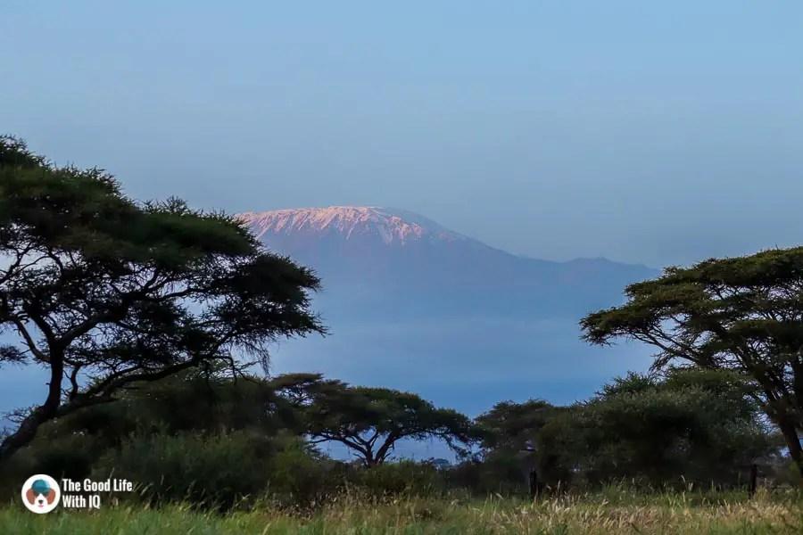 Kibo Safari Camp, Amboseli - Great places to stay