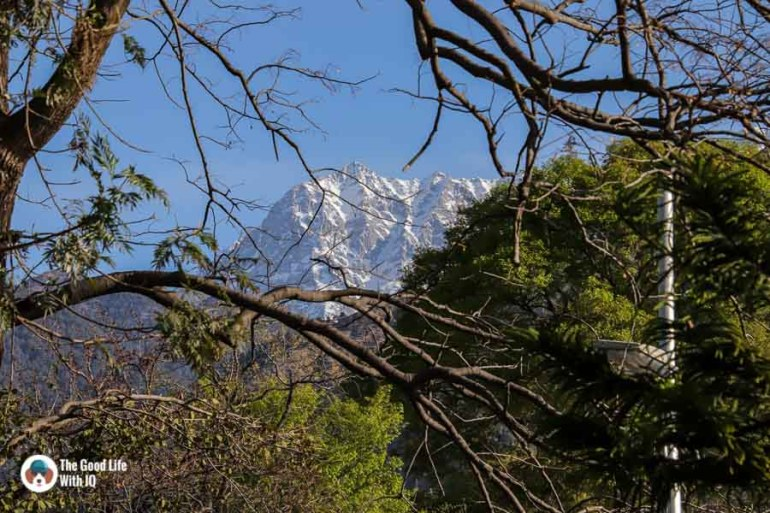 Snow-capped mountain, Dharamshala