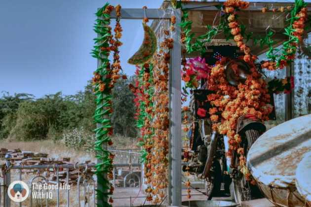 Om Banna temple - Off-beat Rajasthan experiences