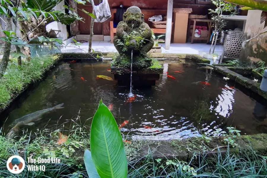 Fountain, Bali Asli Lodge, Ubud, Bali