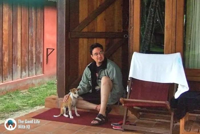 HAvelock Island - Cute doggies we've met on our travels