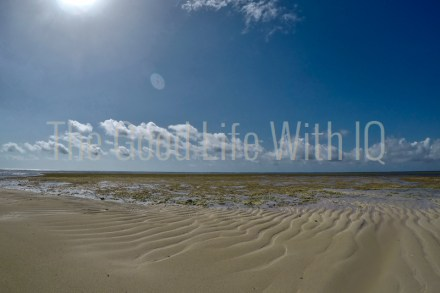 Exposed sandbar at low tide in Malindi Marine National Park