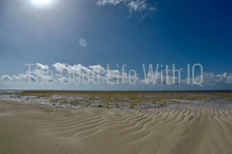 Exposed sandbar at low tide in Malindi Marine National Park