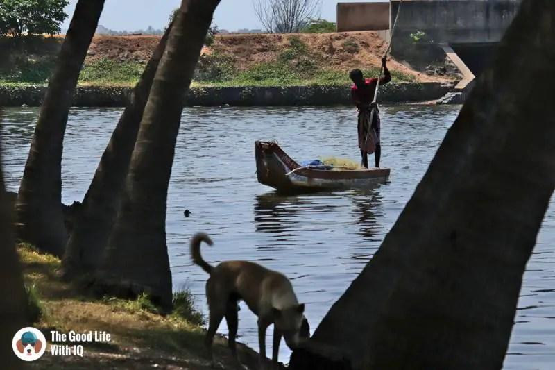 Chinna Veerampattinam backwater