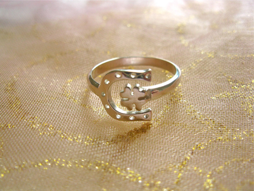 Horseshoe gift - lucky ring