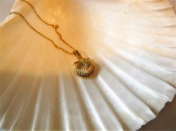 Scallop shell necklace gold-plated