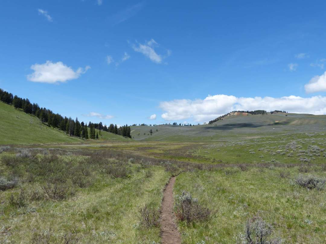 Rescue Creek Trail Yellowstone National Park